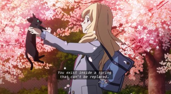 Your Lie in April sakura