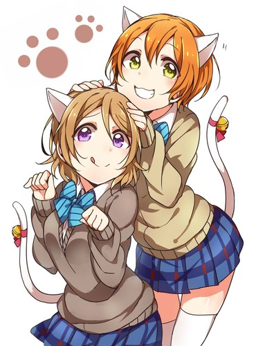 neko-hanayo-and-rin-love-live-school-idol-project-38202659-370-500