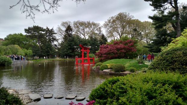 Sakura Matsuri 2017 Traditonal Japanese Garden